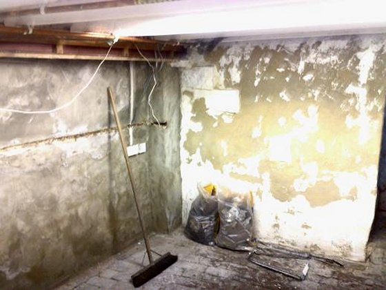 Basement Conversion To Occasional Room & Utility